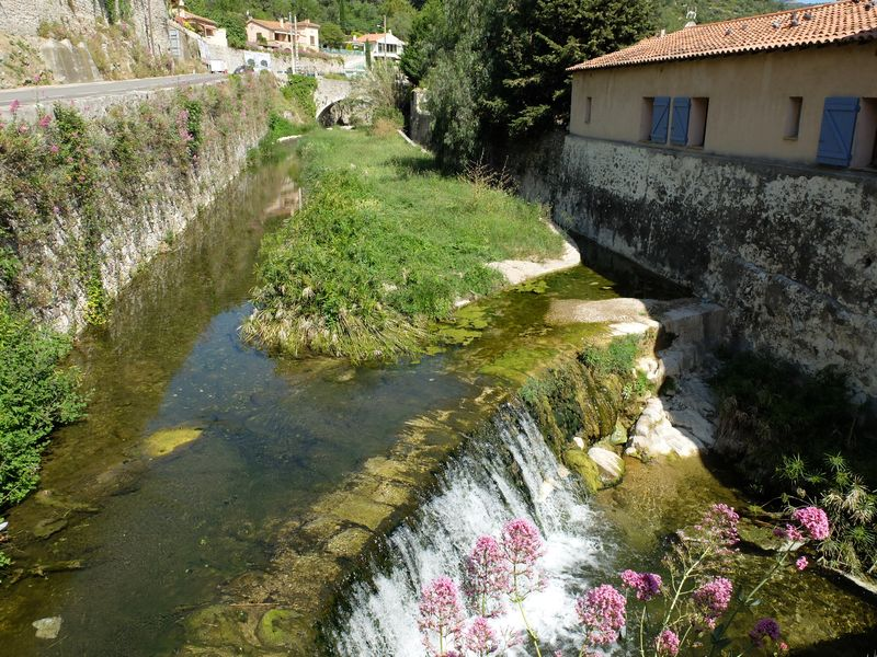 Canal arrosants Ollioules 140509 02