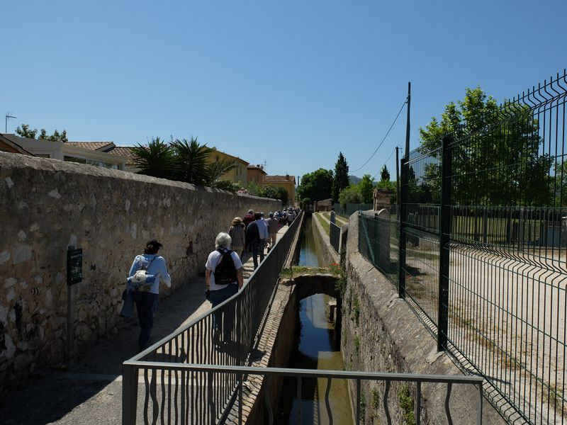 Canal arrosants Ollioules 140509 23