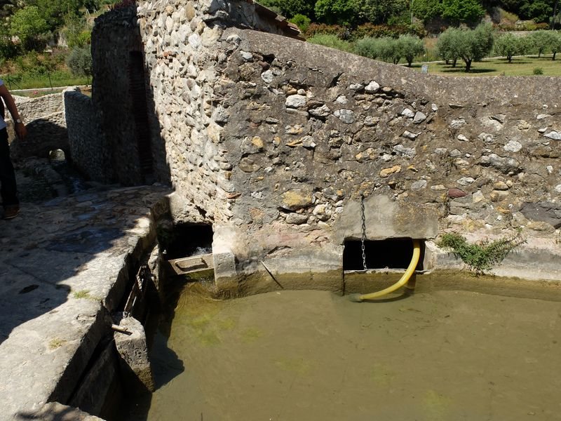 Canal arrosants Ollioules 140509 28